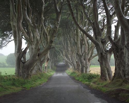 Versand nach Nordirland