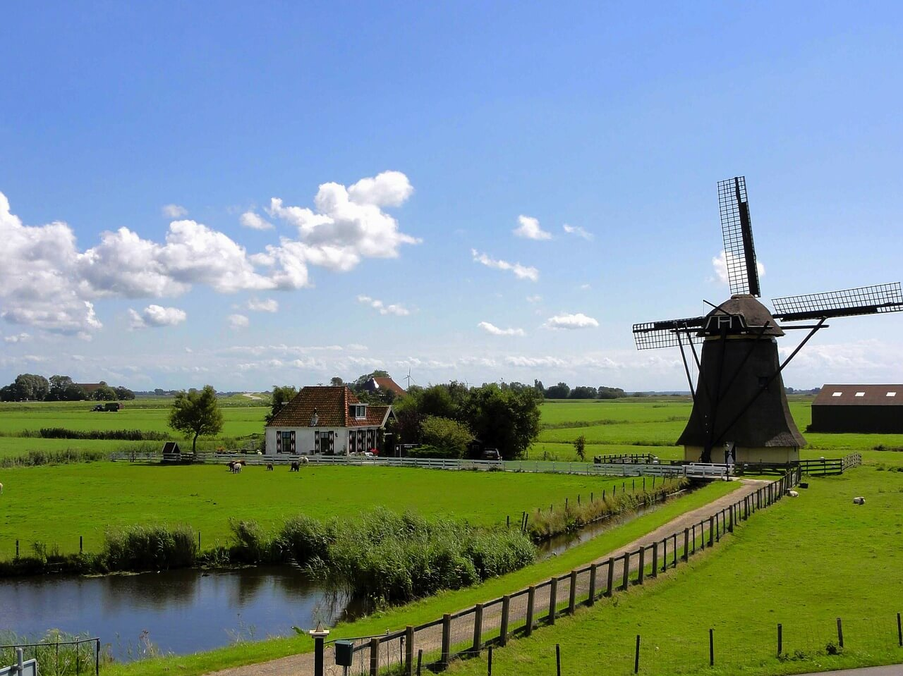 Päckchen nach Holland mit Transglobal Express versenden und sparen!